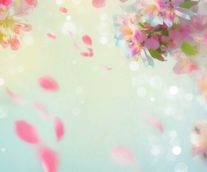 backround, flower, and wallppapper image