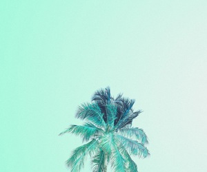 wallpaper, green, and palm trees image