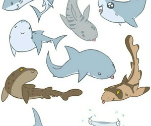 sharks, drawing, and funny image
