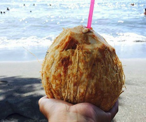 beach, coconut, and pearl image