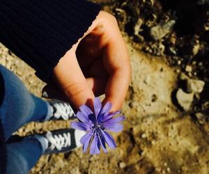 armenia, nature, and autumn image