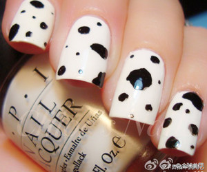 black and white, chinese, and dalmatian image