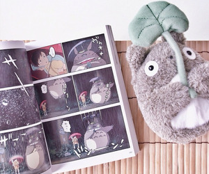 totoro and book image