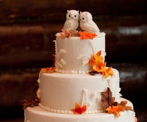 cake, leaves, and owls image