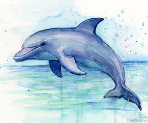 etsy, marine life, and dolphin drawing image