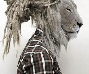 lion, dreads, and cool image