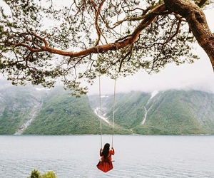 nature and swing image