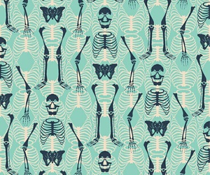 wallpaper, background, and skeleton image