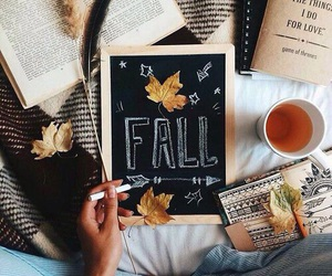 fall, autumn, and book image