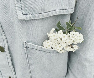beauty, simple, and flowers image