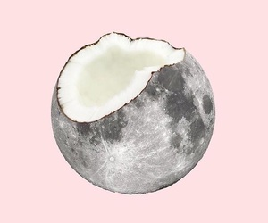 art, coconut, and moon image