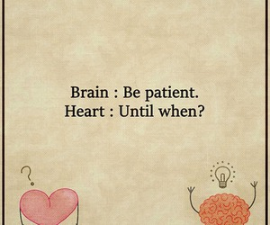 brain, heart, and quotes image