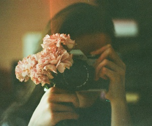 flowers, photography, and camera image