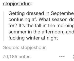 funny, seasons, and tumblr image