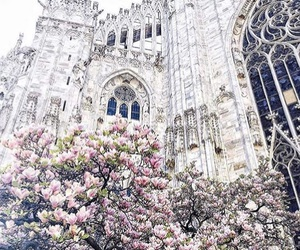 flowers, architecture, and castle image