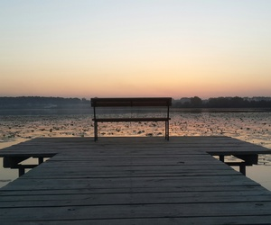 bench, lonely, and water image