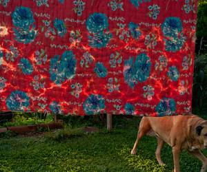 flores, tecido, and coberta image
