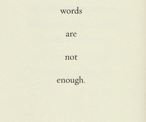 quote, text, and words image