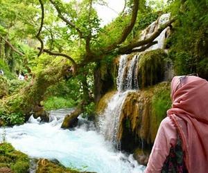 hijab, tree, and turkiye image