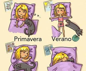 gatito, Gatos, and gato image