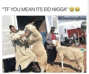 arab, arabic, and eid image