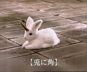 unicorn, rabbit, and bunny image
