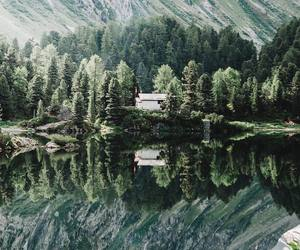 aesthetic, cool, and nature image