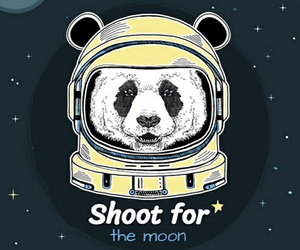 panda, blue, and space image