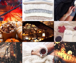 autumn, fall, and falltumblr image