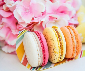 cake, food, and macaroons image