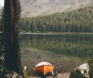 green, lake, and nature image