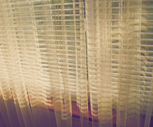 blinds and window image