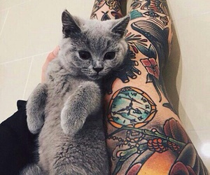 cat, tattoo, and alternative image