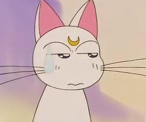 anime, sailor moon, and artemis image