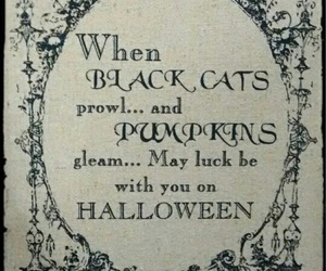 black cats, poem, and Halloween image