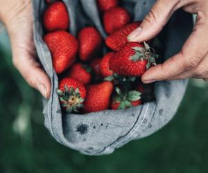 strawberry, fruit, and photography image