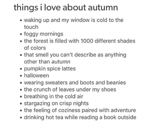autumn and tumblr image