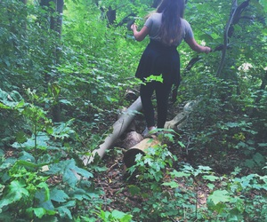 adventure, forest, and tumblr image
