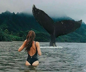 whale, girl, and nature image
