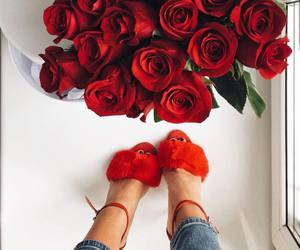 girl, red, and roses image