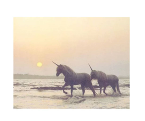 unicorn and love image