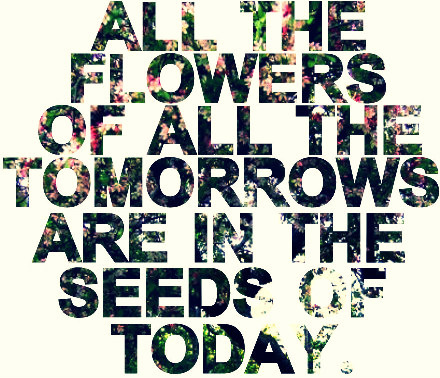 flowers, quote, and seeds image