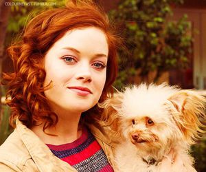 dog and jane levy image