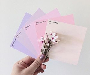 pastel, pink, and flowers image