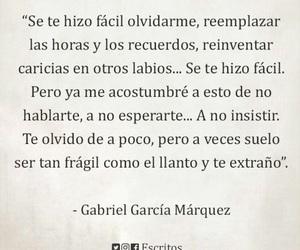 amor, frases, and gabriel garcia marquez image