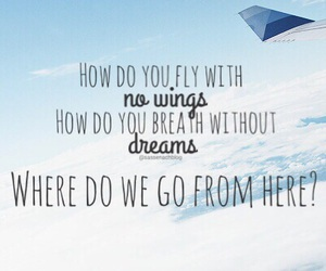 dreams, fly, and lyric image