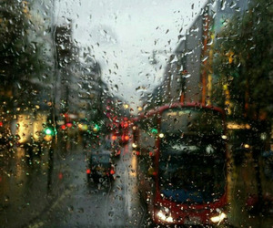 autumn, city, and rain image