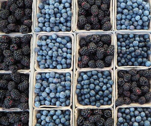 food, blue, and blueberry image