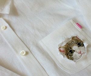 embroidered, pets, and adorably image