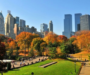 Central Park, new york, and autumn image